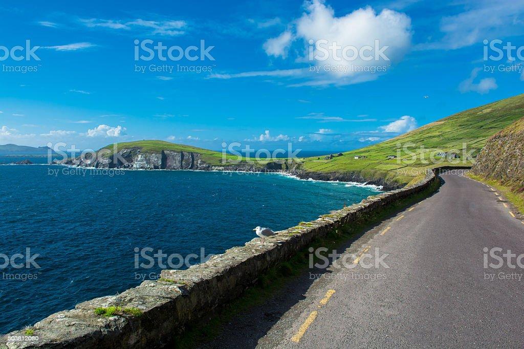 Single Track Coast Road at Slea Head in Ireland stock photo