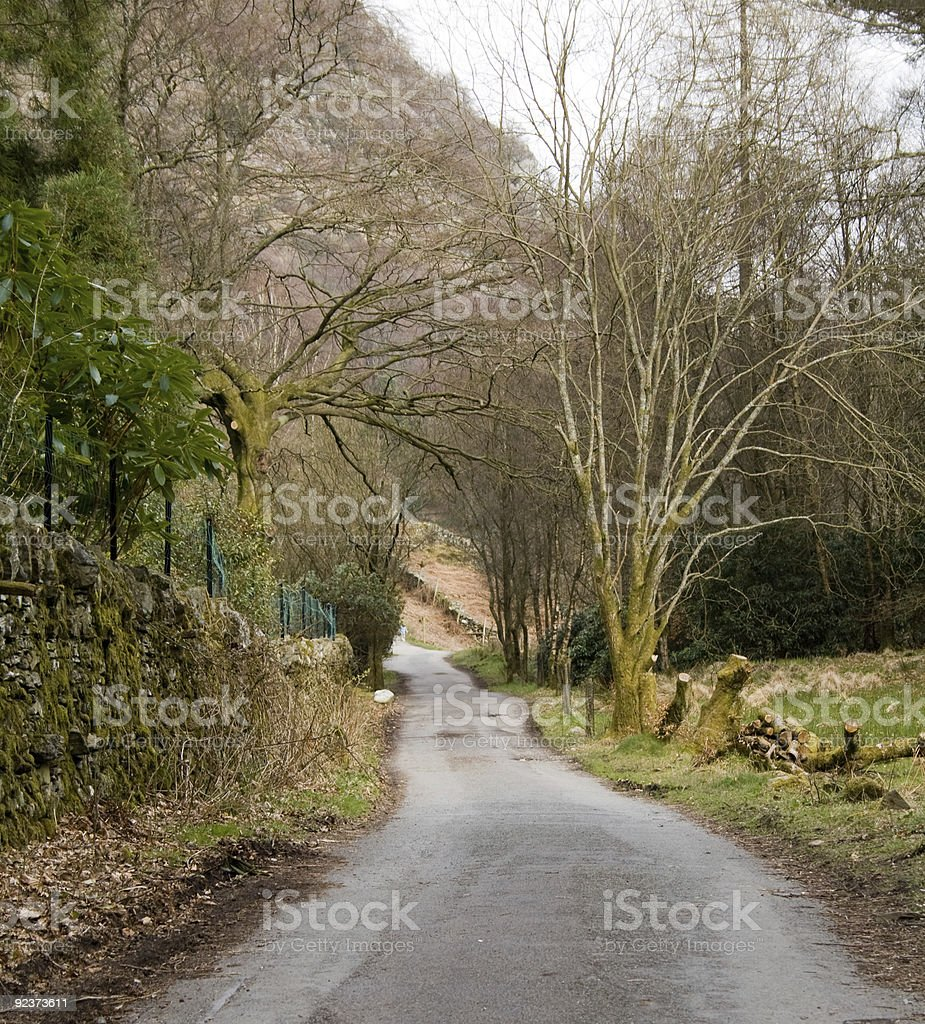 Single Track Road in the Lake District stock photo