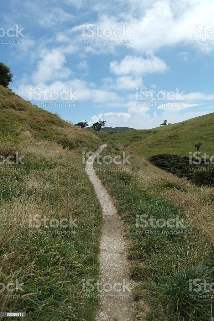 Single trail stock photo