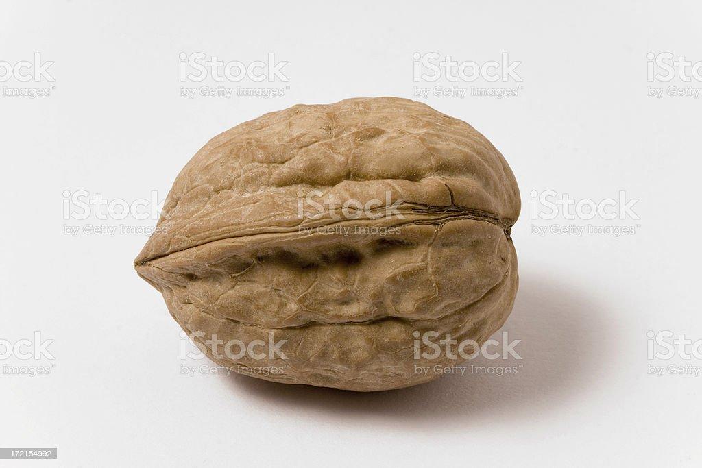 Single walnut royalty-free stock photo