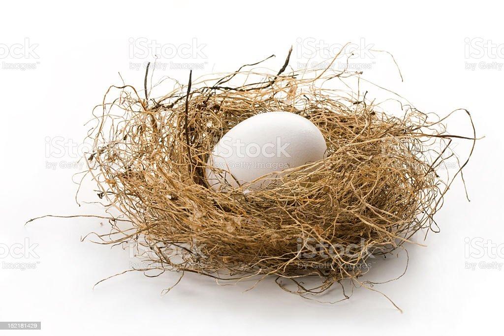 Single white egg in birds nest isolated on white background royalty-free stock photo