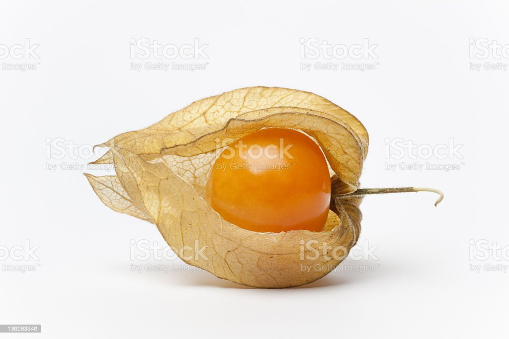 Single whole Physalis stock photo