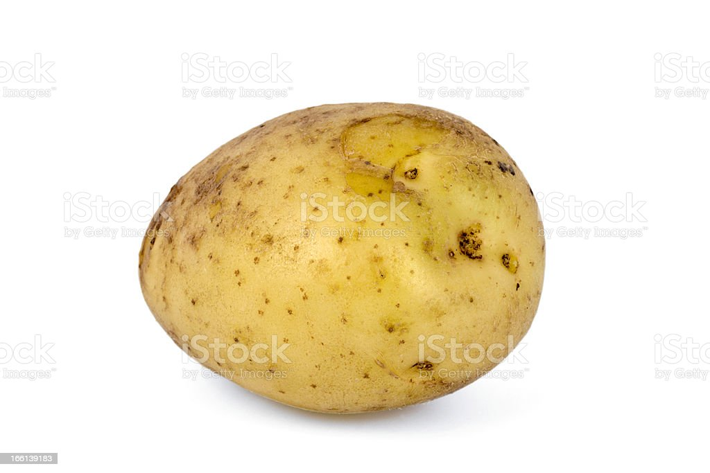 Single Whole Potato royalty-free stock photo