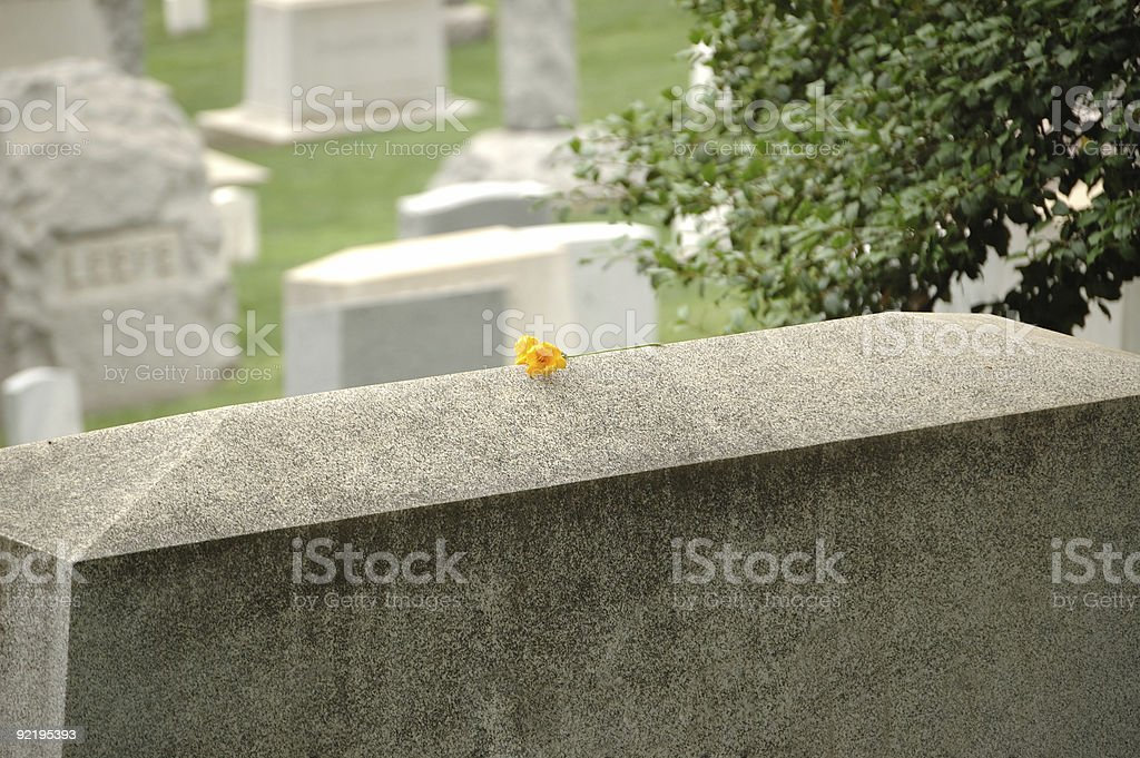 Single yellow flower on grave stone royalty-free stock photo