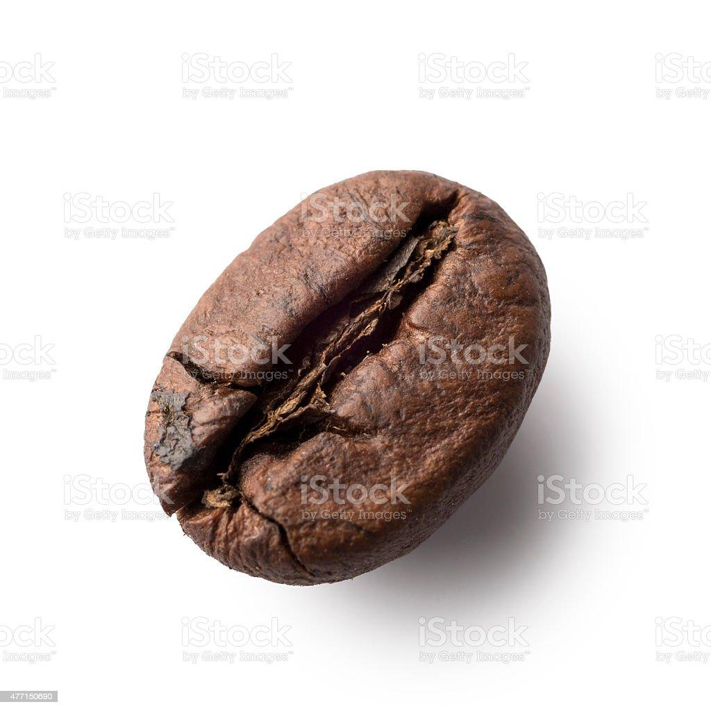 Singular coffee beans isolated on white in macro stock photo