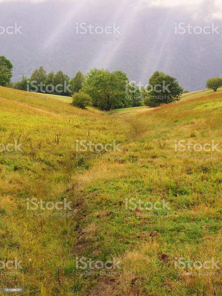 sinuous path stock photo