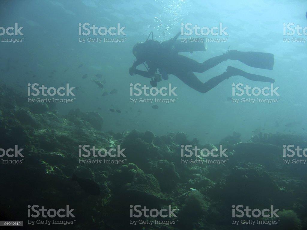 sipadan diver royalty-free stock photo