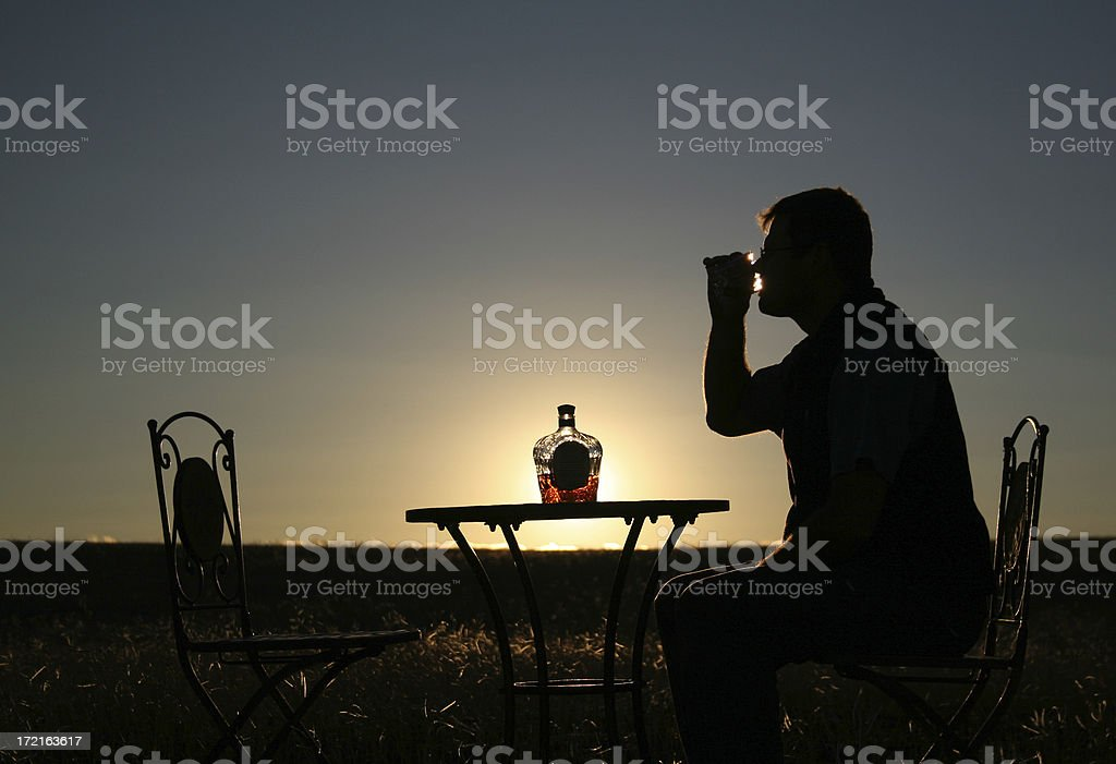 Sipping A Single Malt royalty-free stock photo