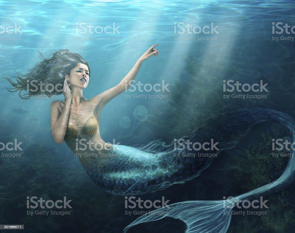 Siren of the sea stock photo