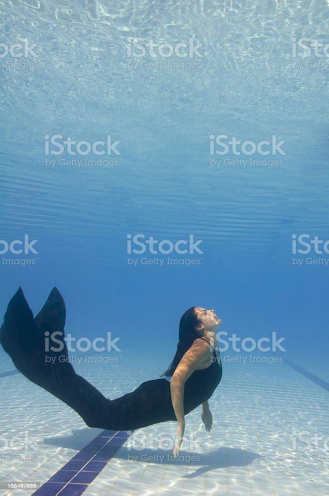Siren stock photo