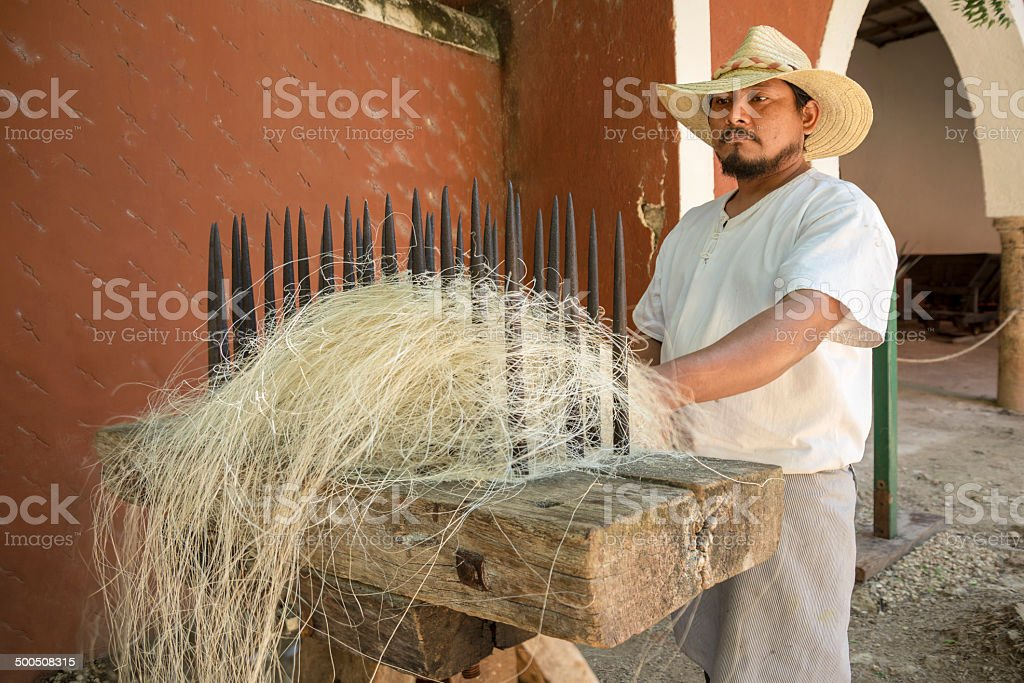 Sisal fiber being processed stock photo