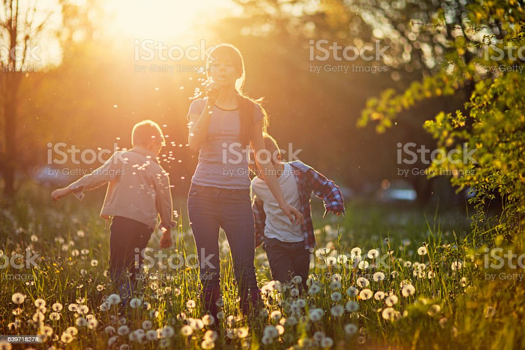 Sister and brothers enjoying spring dandelion field stock photo