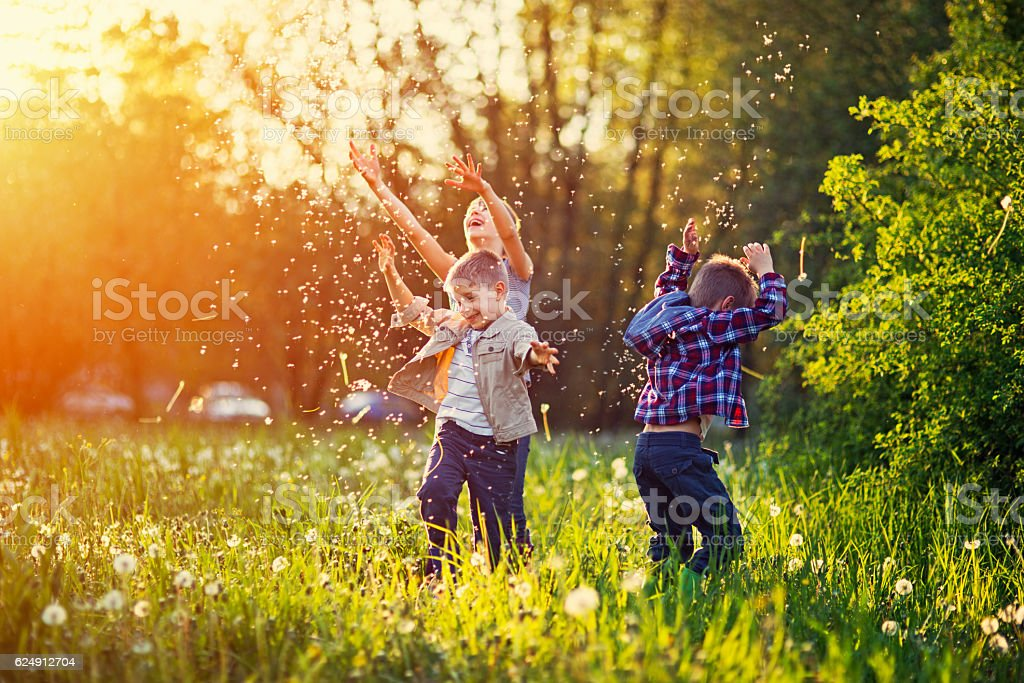 Sister and brothers playing in dandelion field stock photo