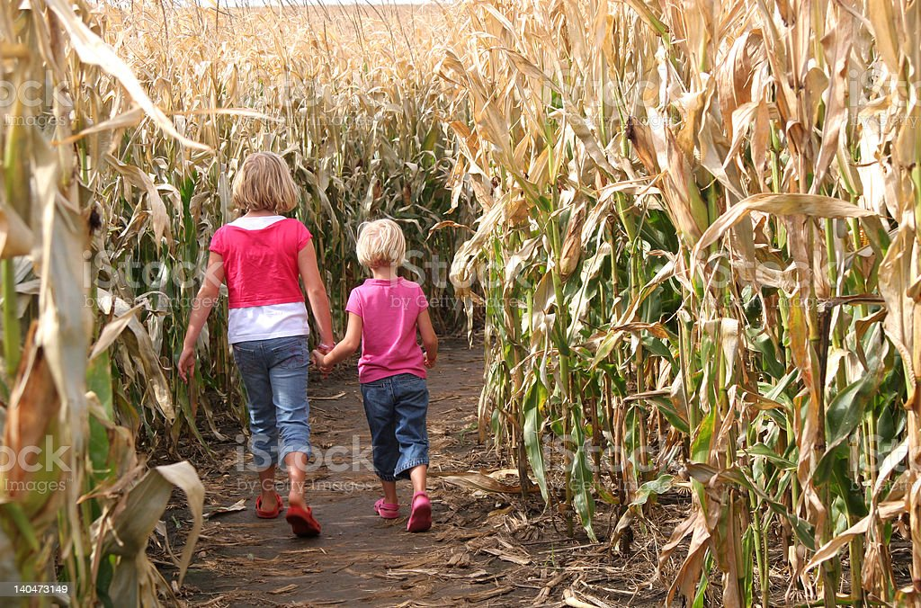 Sisters and a Corn Maze stock photo