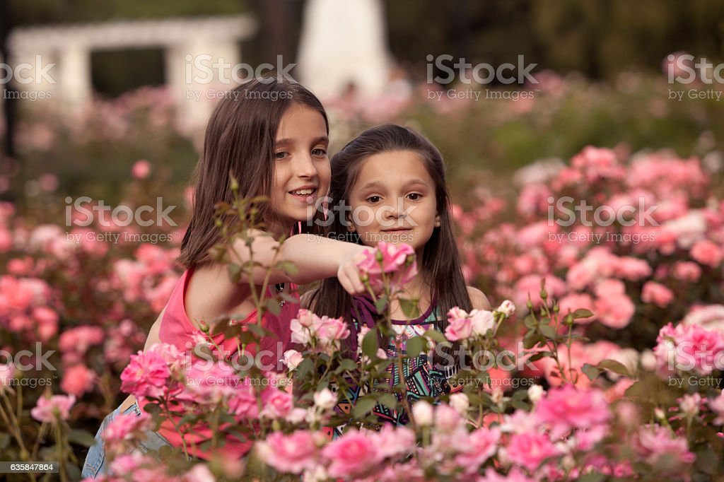 Sisters enjoying rose garden stock photo