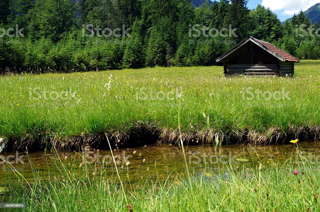 Sitting at the rivulet stock photo