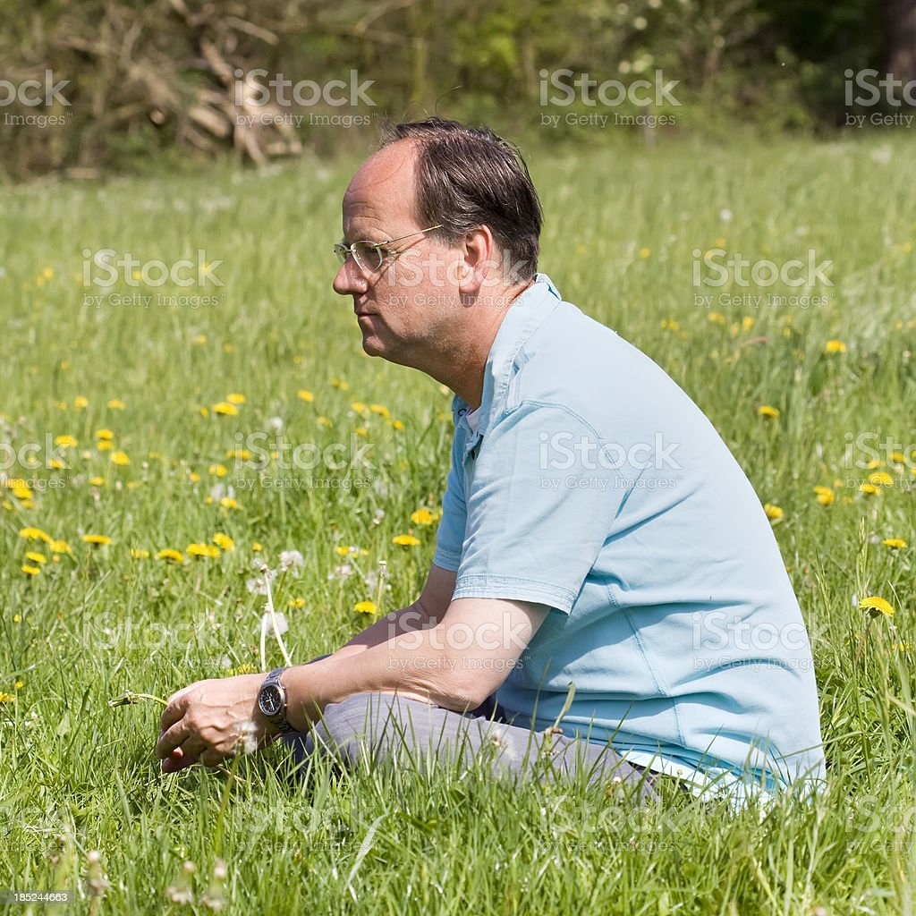 sitting in a field of dandelions royalty-free stock photo
