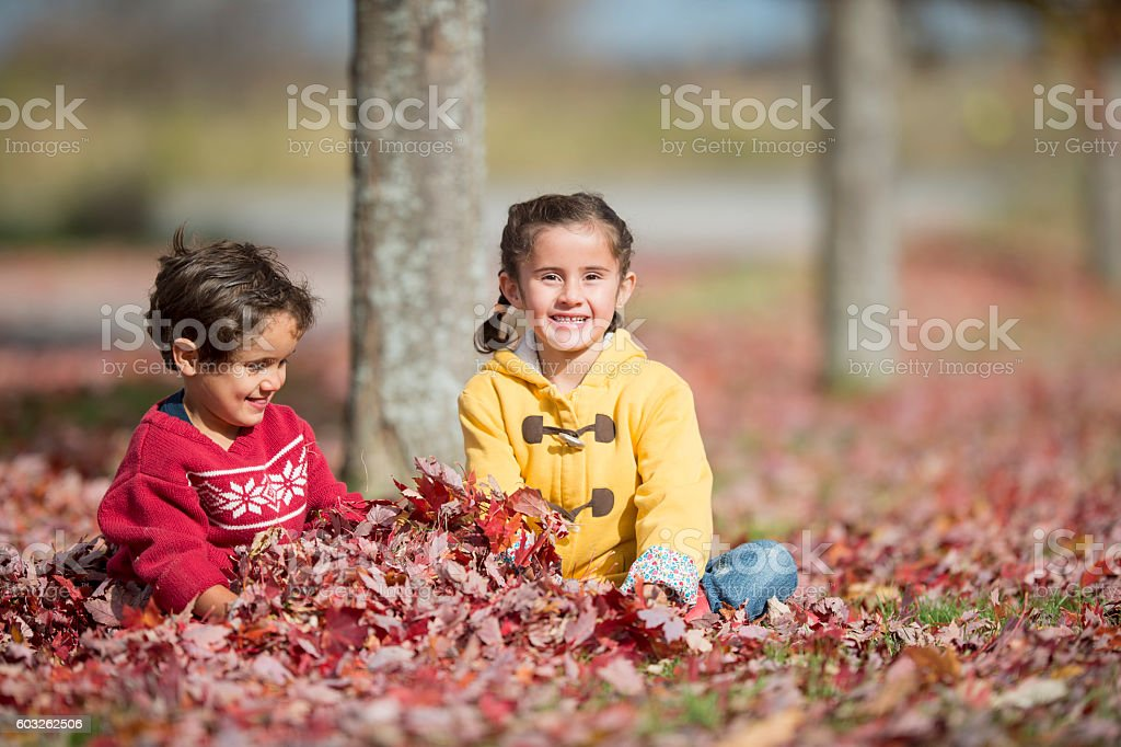 Sitting in a Pile of Leaves stock photo