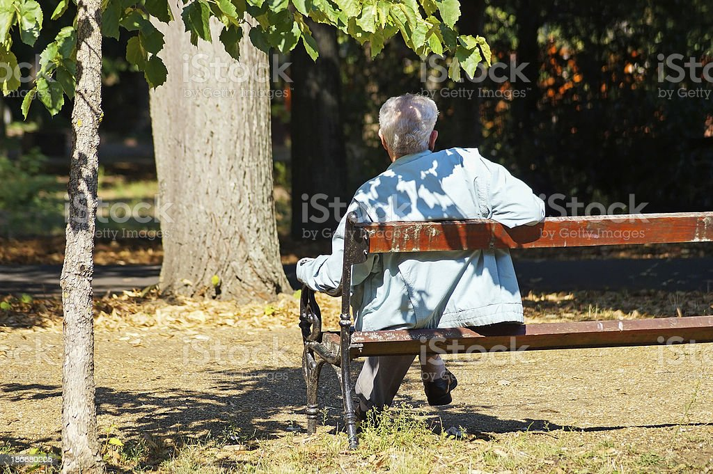 sitting on the bench royalty-free stock photo
