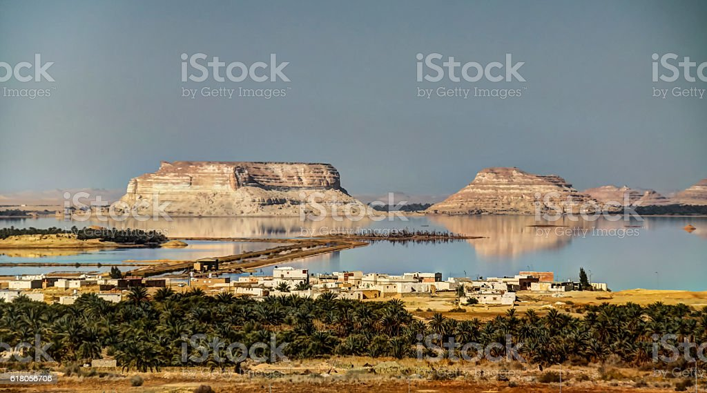 Siwa lake and oasis, Egypt stock photo