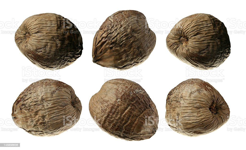 Six Coconuts Collection Isolated on White royalty-free stock photo