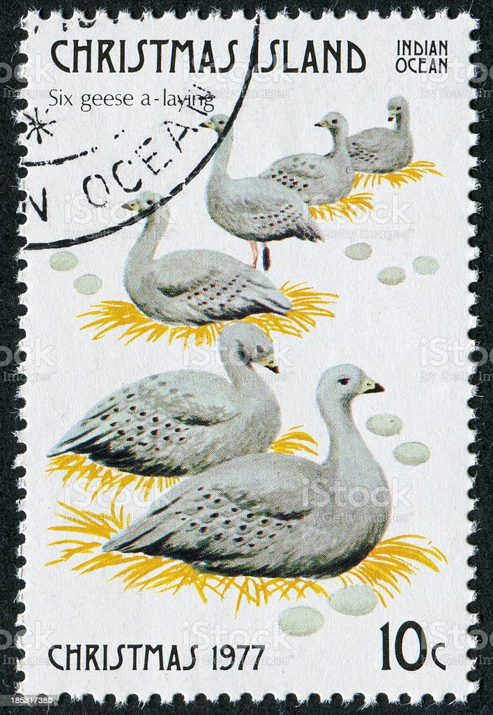Six Geese A Laying Stamp royalty-free stock photo