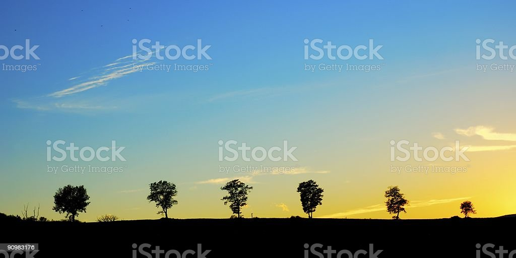 Six in a line royalty-free stock photo