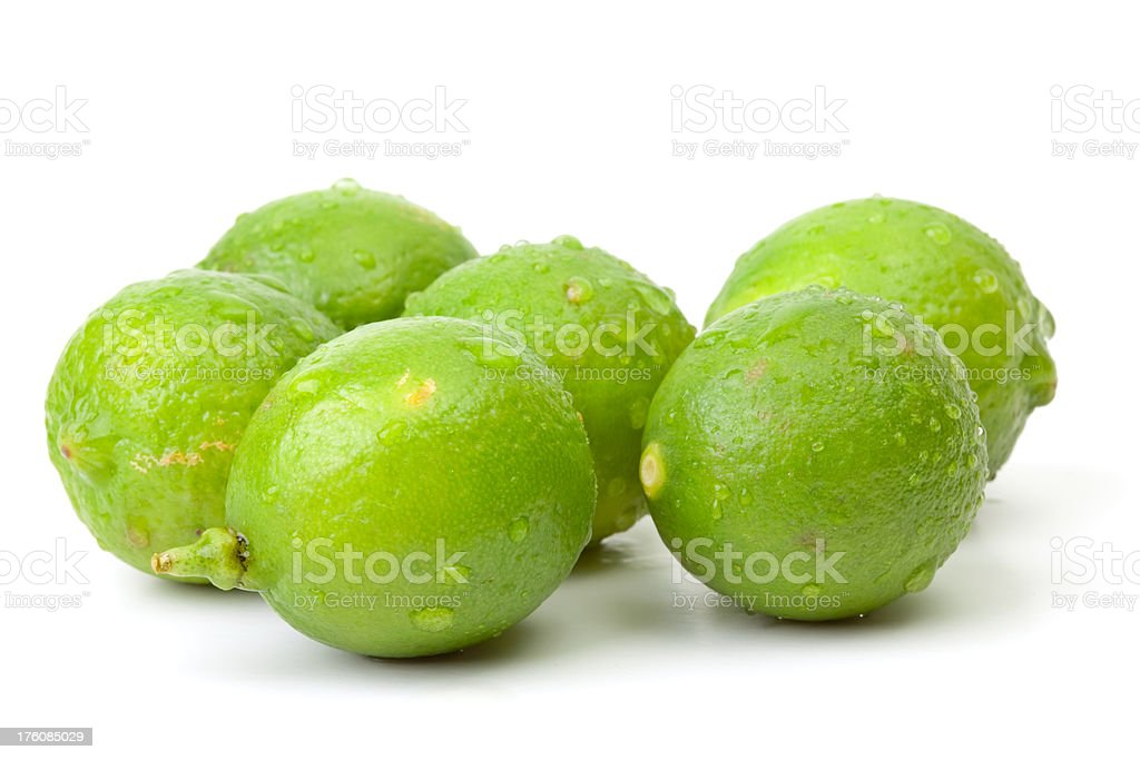 Six limes with water drops royalty-free stock photo