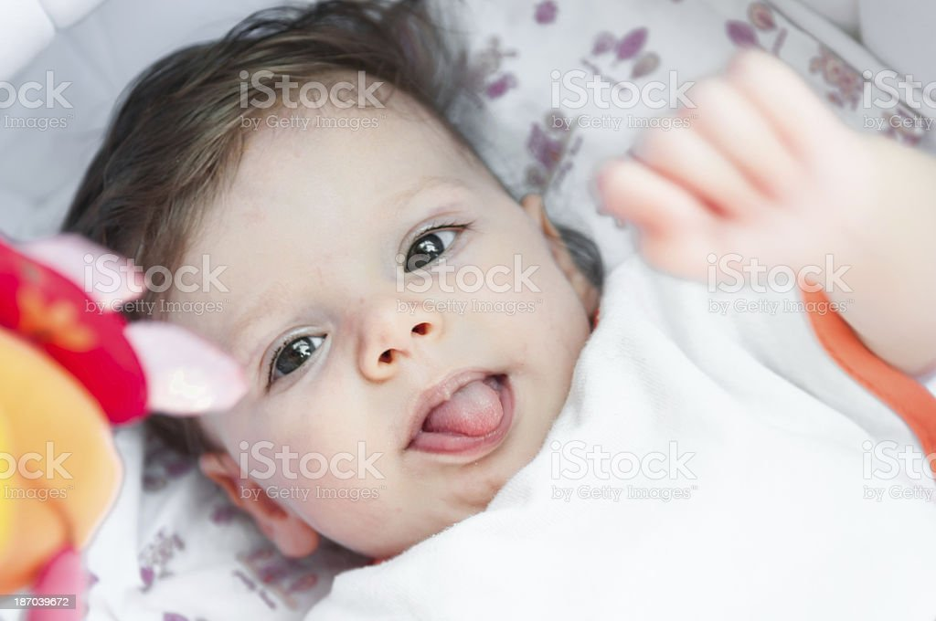 Six month old female baby looking at camera stock photo