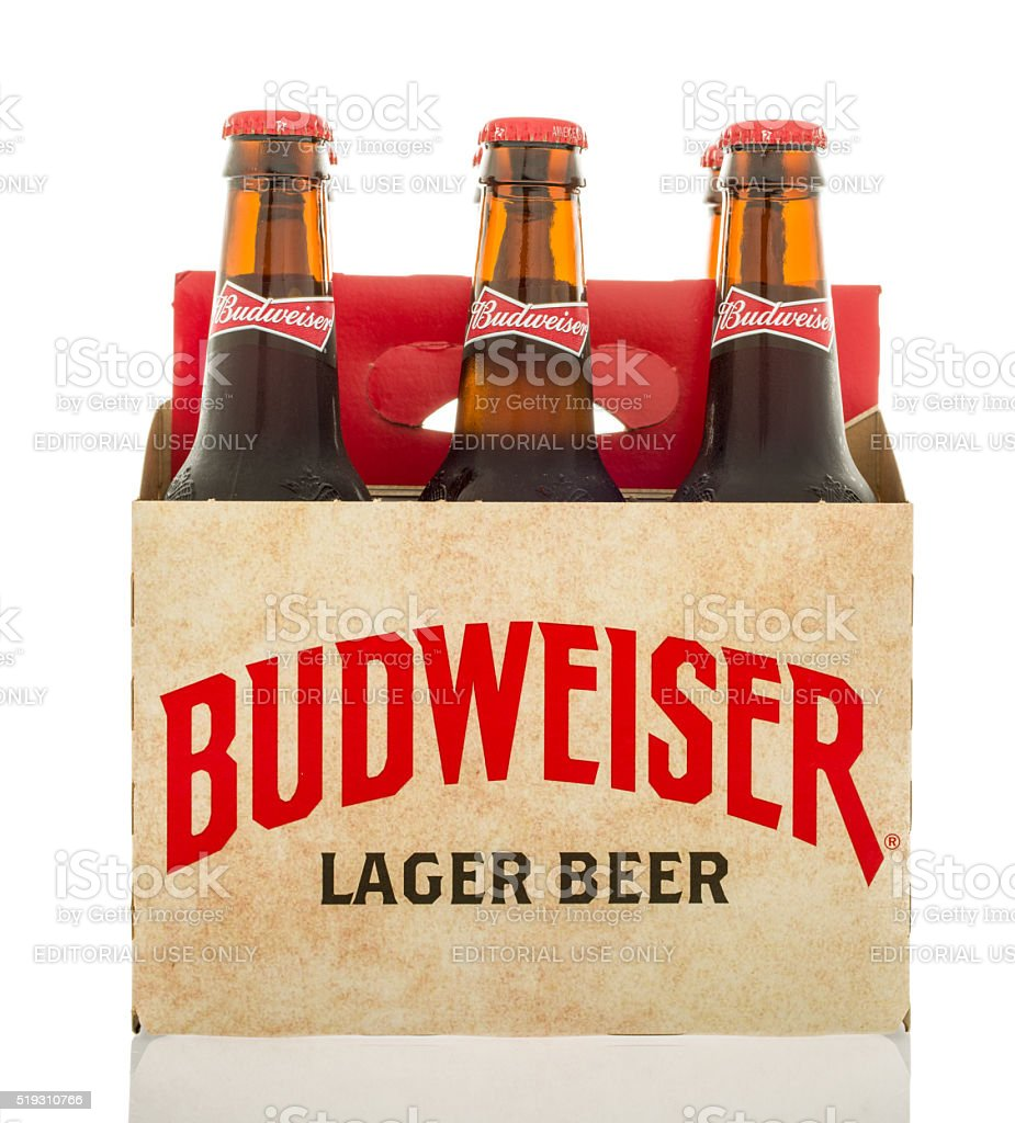 six pack of Budweiser lager beer stock photo