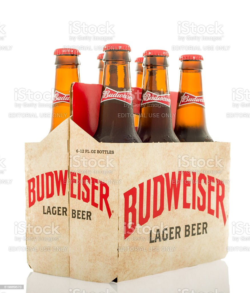 Six Pack of Budweiser stock photo