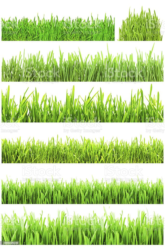 Six sections of bright green grass stock photo