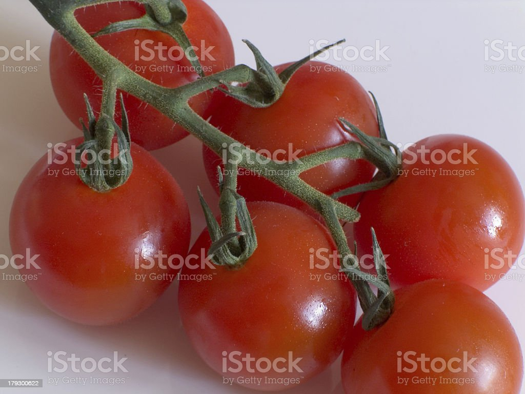 Six small tomatoes on the vine stock photo