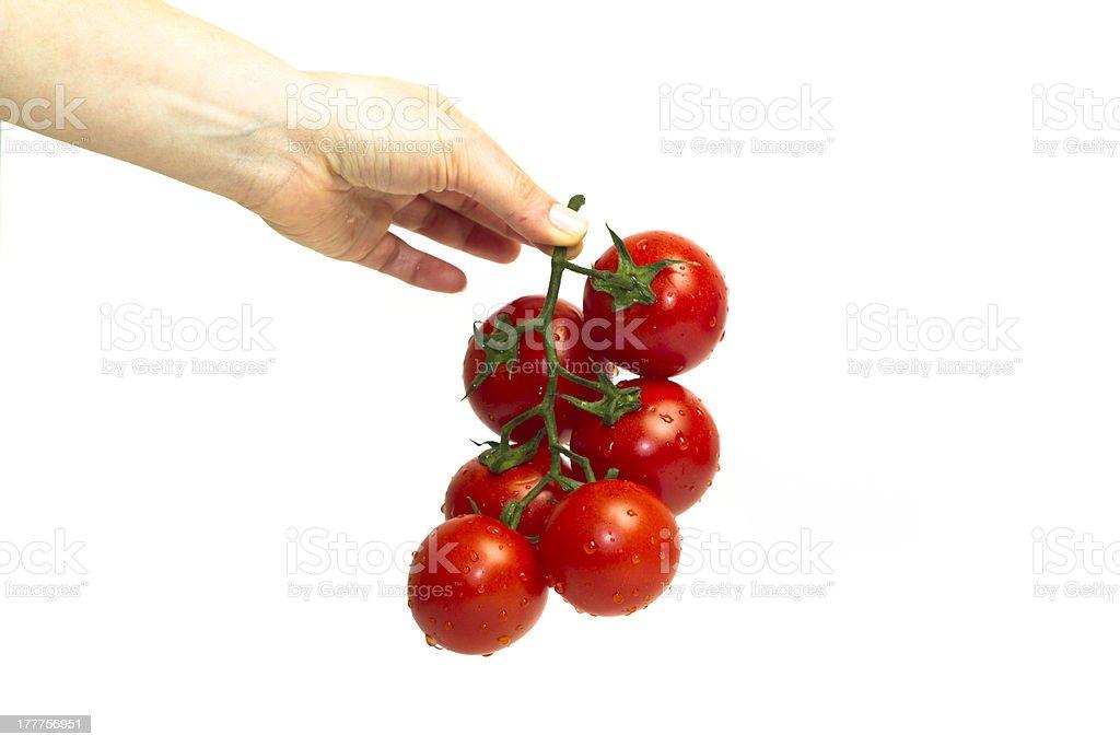 Six tomatoes stock photo