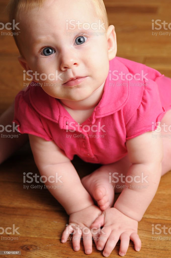 Six-Month-Old royalty-free stock photo