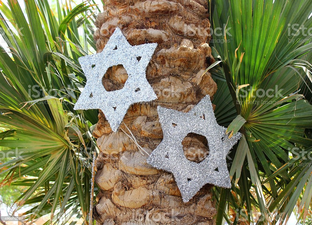 six-pointed stars on a palm tree stock photo
