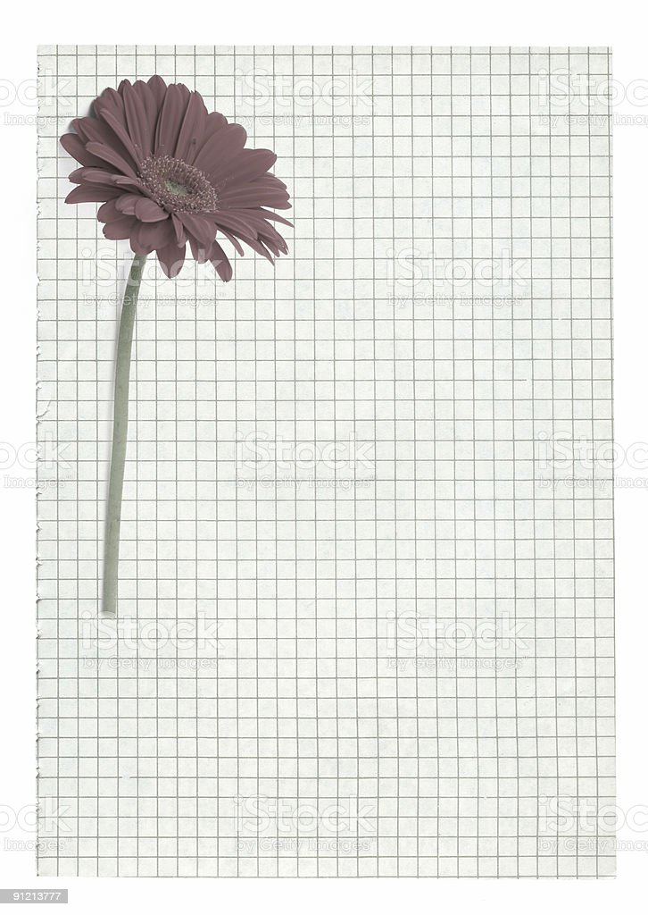 XXL size squared paper page with flower motive royalty-free stock photo