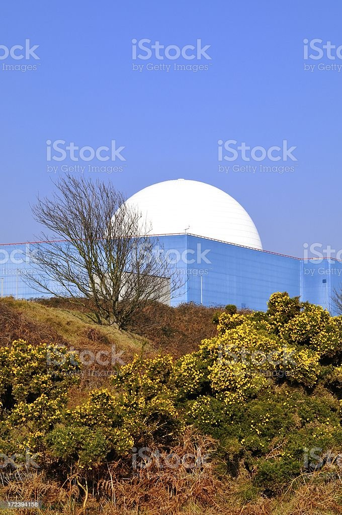 Sizewell dome with gorse stock photo