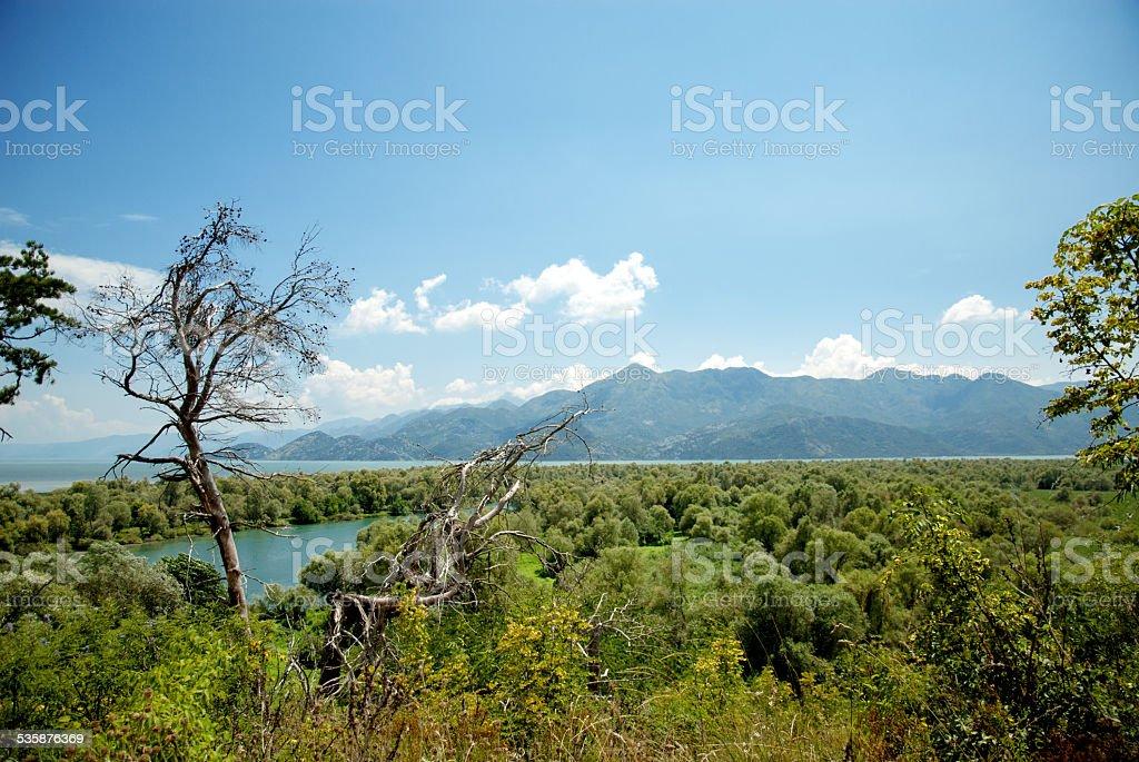 Skadar Lake stock photo
