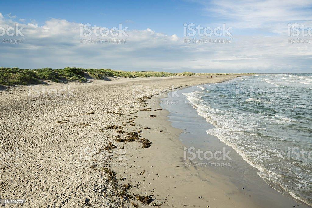 Skagen beach royalty-free stock photo