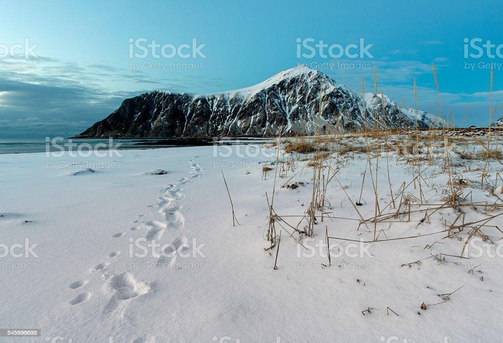 Skagsanden Beach n the winter on the Lofoten Islands stock photo
