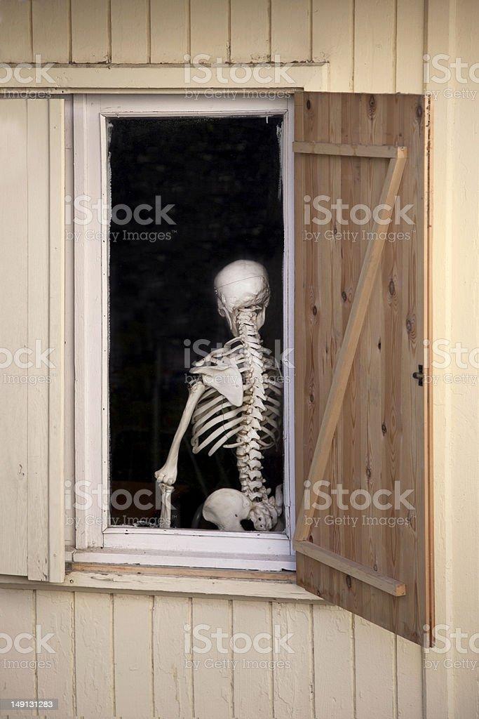 Skeleton at home stock photo