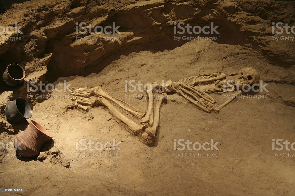 skeleton bones in grave royalty-free stock photo