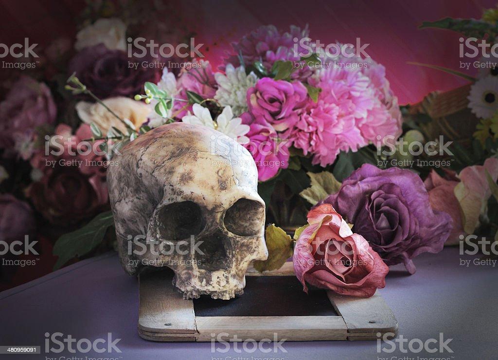 Skeleton Flower Dead royalty-free stock photo