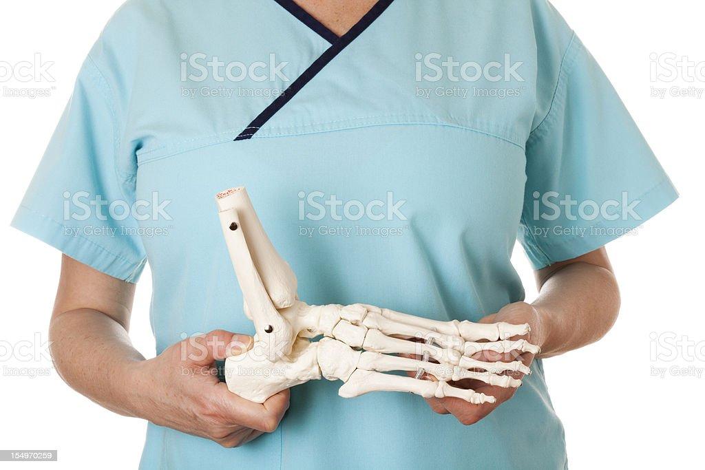Skeleton foot royalty-free stock photo