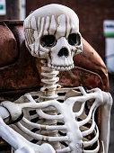 Skeleton in Bedminster, Bristol