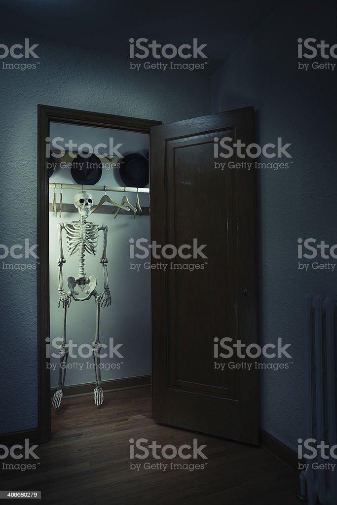 Skeleton in the Closet - Full Body Hanging Vt stock photo