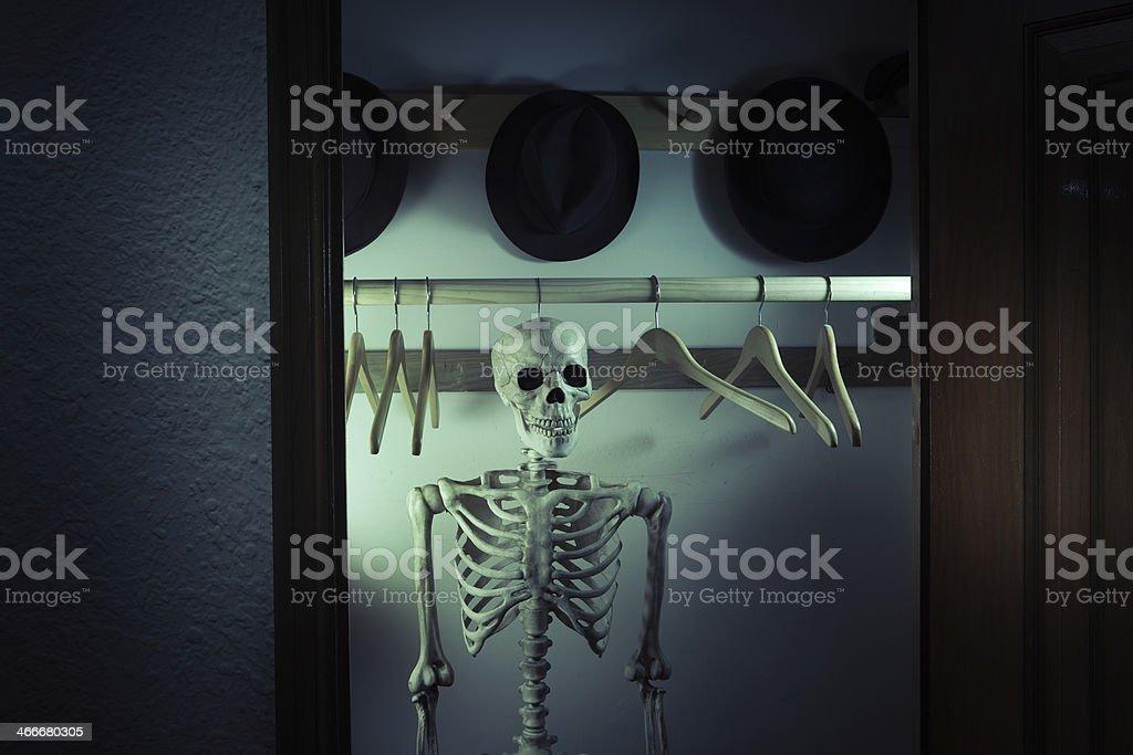 Skeleton in the Closet - Hanging Half Body Hz stock photo