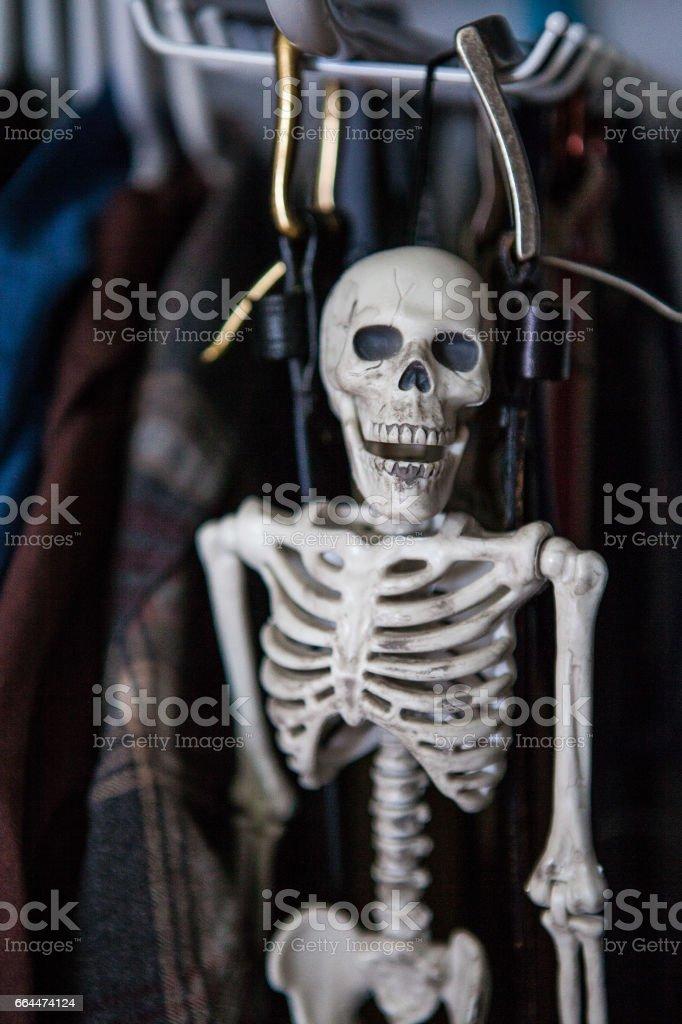 Skeleton in the Closet stock photo