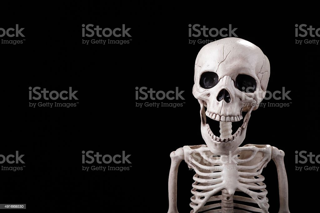 Skeleton looking to the camera stock photo
